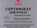 сертификат, аппаратный педикюр